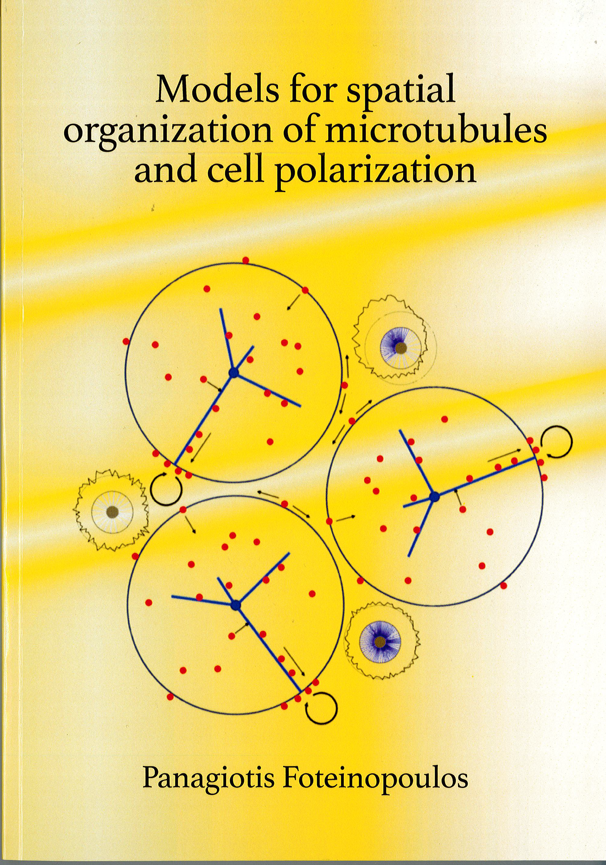 Cover of Models for spatial organization of microtubules and cell polarization
