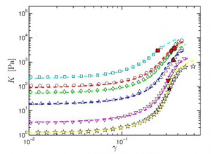 biological soft matter gijsje koenderink nature physics