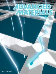 nanoscale solar cells erik garnett cover advanced materials